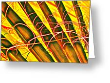 Yellow Palm Fun Greeting Card by Gwyn Newcombe