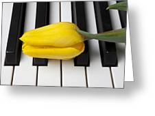 Yellow Tulip On Piano Keys Greeting Card by Garry Gay