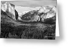 Yosemite Valley Greeting Card by Sandra Bronstein