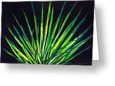 Yucca Greeting Card by Melvin Moon