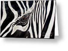 Zebra Eye Greeting Card by Ilse Kleyn