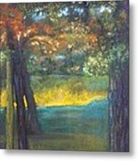 Blazing Autumn Light Metal Print by Sandra McClure