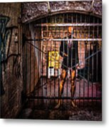 He Believes It Is A Dream Metal Print by Bob Orsillo
