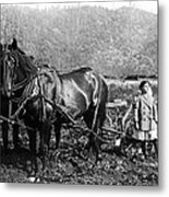 Plowing The Land C. 1890 Metal Print by Daniel Hagerman