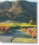 The Hills Of Clos La Chance Winery Metal Print by Artist and Photographer Laura Wrede
