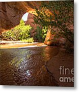 Coyote Natural Bridge - Coyote Gulch - Utah Metal Print by Gary Whitton