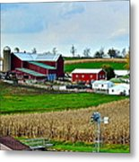 Down On The Farm Metal Print by Frozen in Time Fine Art Photography