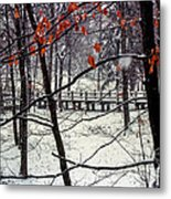 Early Snow Metal Print by Bob Phillips