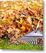 Fall Leaves With Rake Metal Print by Elena Elisseeva