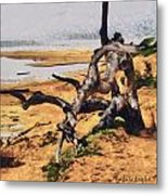 Gnarly Tree Metal Print by Barbara Snyder