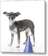 Happy Birthday Metal Print by Edward Fielding