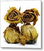Heap Of Wilted Roses Metal Print by Bernard Jaubert