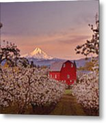 Hood River Sunrise Metal Print by Darren  White