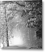 Into The Fog Metal Print by Andrew Soundarajan