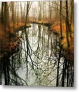 Just One Wish Metal Print by Diana Angstadt