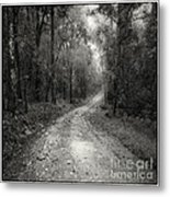 Road Way In Deep Forest Metal Print by Setsiri Silapasuwanchai