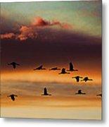 Sandhill Cranes Take The Sunset Flight Metal Print by Bill Kesler