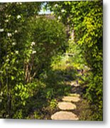 Summer Garden And Path Metal Print by Elena Elisseeva