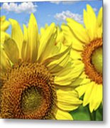 Sunflowers Metal Print by Elena Elisseeva