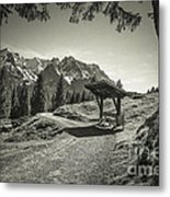 walking in the Alps - bw Metal Print by Hannes Cmarits