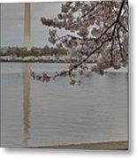 Washington Monument - Cherry Blossoms - Washington Dc - 011317 Metal Print by DC Photographer