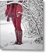 Winter... Metal Print by Renata Vogl
