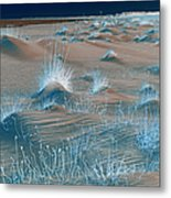 Winters Dunes IIa Metal Print by Suzanne Gaff