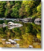 Williams River Autumn Metal Print by Thomas R Fletcher