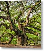 Angel Oak Tree Of Life Metal Print by Dustin K Ryan