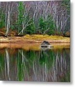 Birch Shoreline Metal Print by Pat Now