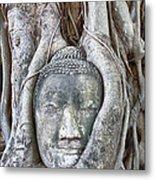 Buddha Head In Tree Metal Print by Fototrav Print