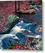 Chesterfield Gorge New Hampshire Metal Print by Edward Fielding