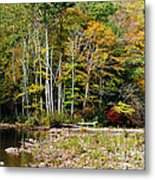 Fall Color River Metal Print by Thomas R Fletcher