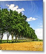 French Country Road Metal Print by Elena Elisseeva