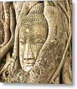 Head Of Buddha Ayutthaya Thailand Metal Print by Colin and Linda McKie