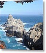 Point Lobos Number Four Metal Print by Catherine Lau
