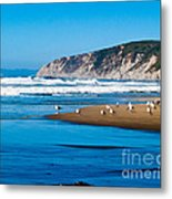Pt Reyes National Seashore Metal Print by Bill Gallagher