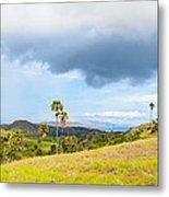 Rinca Panorama Metal Print by MotHaiBaPhoto Prints