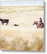 Round Up Metal Print by Cindy Singleton