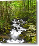 Smoky Mountain Stream Metal Print by Frozen in Time Fine Art Photography