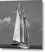 Tall Ship Harvey Gamage Metal Print by Skip Willits