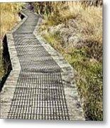 Wetland Walk Metal Print by Les Cunliffe