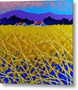 Yellow Meadow Metal Print by John  Nolan
