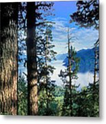 Altay Lakes Teletskoe Metal Print by Anonymous