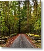 Great Smoky Mountains Metal Print by Janice Spivey
