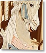 Menagerie Metal Print by JAMART Photography