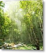 Waterfall In Rainforest Metal Print by Atiketta Sangasaeng