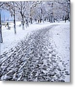 Winter Park Metal Print by Elena Elisseeva