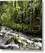 Jungle Stream Metal Print by Les Cunliffe