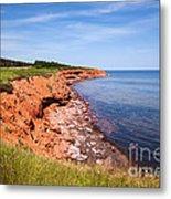 Prince Edward Island Coastline Metal Print by Elena Elisseeva